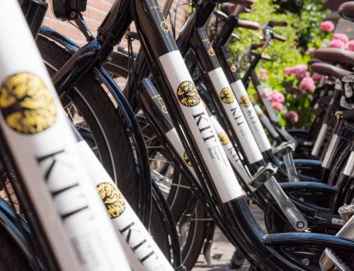 Deze zomer: Amsterdam in tropische sferen
